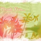 Card: Thank You by amak