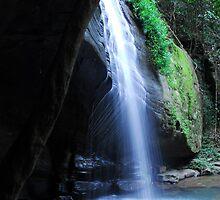 Buderim waterfalls by Beth  Wode