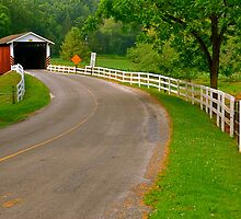 Summer at Jackson's Saw Mill Covered Bridge by Monte Morton