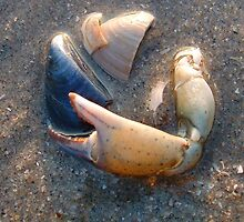SEASHORE VICTIMS by DAVE SNEYD