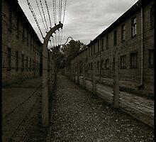 Auschwitz I Electrified Fence 2 by Peter Harpley