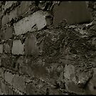 Auschwitz I Block Wall by Peter Harpley