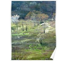 Graveyard Fields Spring Poster