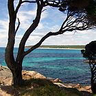 Seascape Western Australia by David  Barker