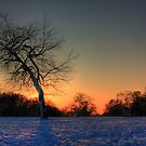 Sunset on Snow by Martin Griffett