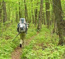 Backpacking - Isle Royale National Park by Doug Winquist