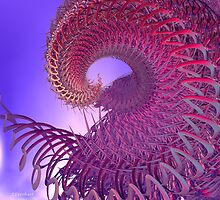 Great Spiral in the Sky by Julie Everhart