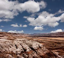 Barren Expanse - Drumheller, AB by Michael Phillips