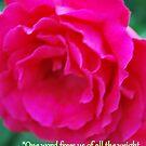 Love Quote  by Michelle BarlondSmith