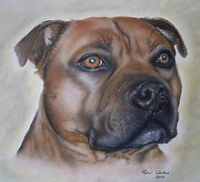 Staffordshire Bull Terrier in Pastel by Peter Lawton