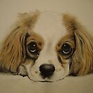 King Charles spaniel in Pastel by Peter Lawton