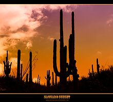 Saguaro Sunset - Titled Print by Mark Podger