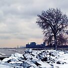 a cold day in the city by Angel Warda