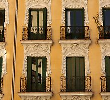 Madrid windows by Esther  Moliné