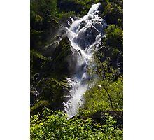 Spring Rush Photographic Print