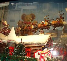 Macy's Window Christmas 2007 by MrsOulgundog