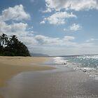 Hawaiian Paradise #2 by jtalia