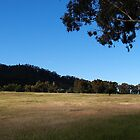 Riverina by shae27