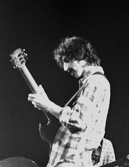 Zappa Solos by Imagery
