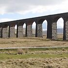 Ribblehead Viaduct, Yorkshire, UK by GeorgeOne