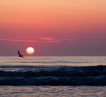 sunrise over the Atlantic by Ted Petrovits