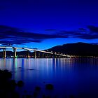 Tasman Bridge  by David  Kembrey