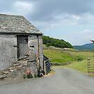 A road runs through it, Ickonthwaite, Cumbria. by Roy  Massicks