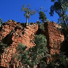 Alligator Gorge, Southern Flinder's Ranges, S.A. by elphonline