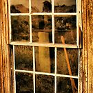 A Window to the Past by Barbara  Brown