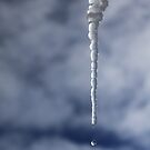 Icicle And Water Drop by James Eddy