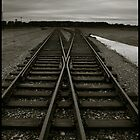 Auschwitz Birkenau - Railway (towards the 'Ramp') by Peter Harpley