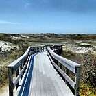 Boardwalk by SharonAHenson