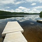 Legrou Lake Boat Dock by Allen Lucas