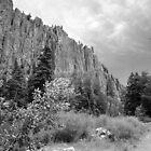 Palisades, New Mexico by Gordon Lukesh