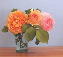 June Roses by Christine Wilson