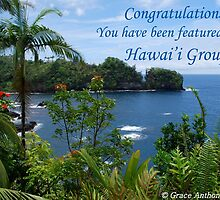 Hawai'i Group Feature Banner by GraceNotes