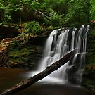 Cayuga Falls - June 2010 by Lori Deiter