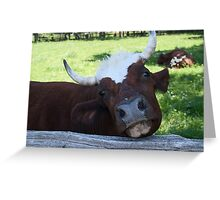 Ain't I jest the cutest thang? By Colin Harper (12) Greeting Card