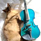 the cat and the fiddle © 2010 patricia vannucci  by PERUGINA