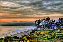 WON the 'California image. weather' challenge of group 'California Sound'
