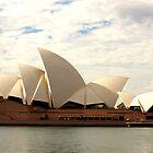 Sydney Opera House by Carol Blankenship