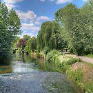 Ramskill River by Steve Malcomson