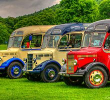 Bedford Trio by David J Knight