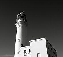Flamborough Head Light House by Neil Messenger