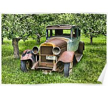Alone In The Orchard Poster