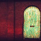 Distressed Door - Chiltern, Victoria by Georgina James