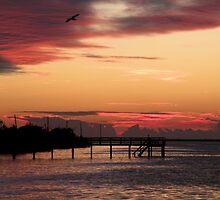 Cranberry Sunset by Rosalie Scanlon