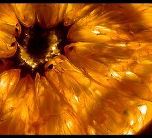 Orange Mystery by quiksilva7