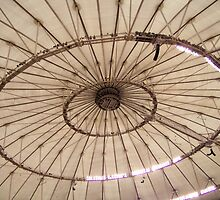 Catwalks at The Top of the Trop by Judy Wanamaker