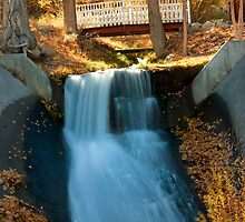 Tiny cascade at Lee Vining, California by Soumya Mitra